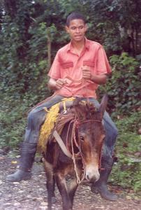 Dominican John Wayne