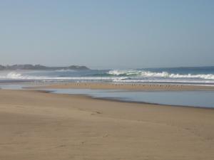 eine perfekte Welle
