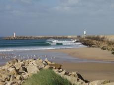 10 Tage surfen in Peniche