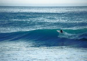 Big Wave, photo: Katharina Fluß