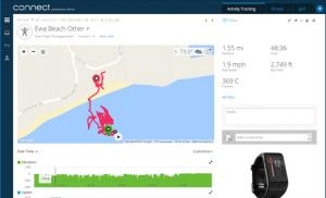 Garmin Surf Tracker Output